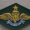 Indonesian National Police Senior Jumpmaster paratrooper wings, combat dress