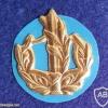 דרגת צווארון רס''ר (רב סמל ראשון) - חיל הים.