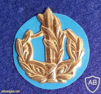 דרגת צווארון רס''ר (רב סמל ראשון) - חיל הים. img12452