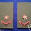 """רס""""מ (רב סמל מתקדם) - חילות היבשה."""
