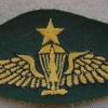 Indonesian Marine Corps Senior paratrooper wings, combat dress