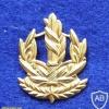 דרגת צווארון רס''ב (רב סמל בכיר) - חיל הים