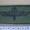 Jordan paratrooper wings, combat dress img13141
