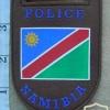 Namibian Police Force arm flash 2