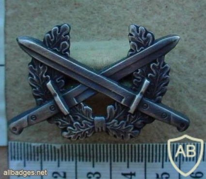 Namibian Army cap badge, 1st pattern img13782