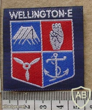 New Zealand Wellington East Boy Scouts arm patch img13853