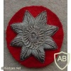 New Zealand Army Quartermaster Star, bullion img13861