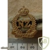 New Zealand Expeditionary Force collar badge img14311