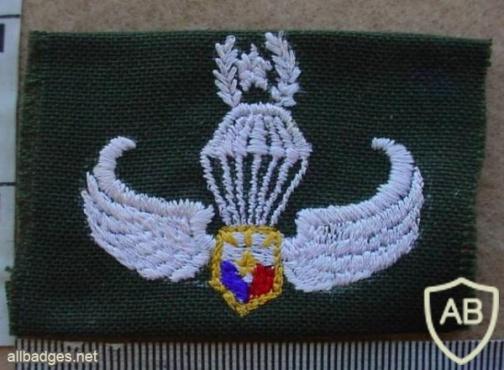 PHILIPPINES Army Parachutist jump wings, Master, type 2 img14356