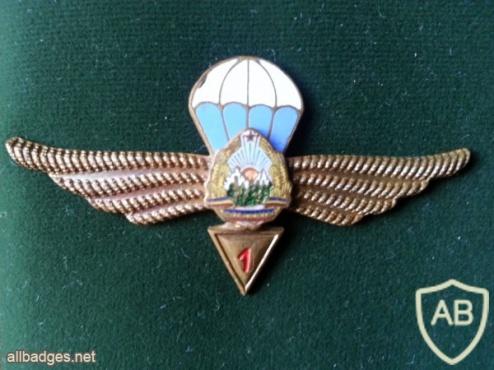 ROMANIA (Socialist Republic of) Air Force Parachutist wings, 1st Class, 1965-1977 img15504