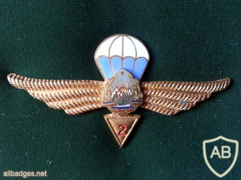 ROMANIA (Socialist Republic of) Air Force Parachutist wings, 2nd Class, 1965-1977 img15505