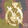 7 line infantry cap badge, gold