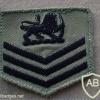 Rhodesian Air Force Regiment shoulder title, Combat Dress