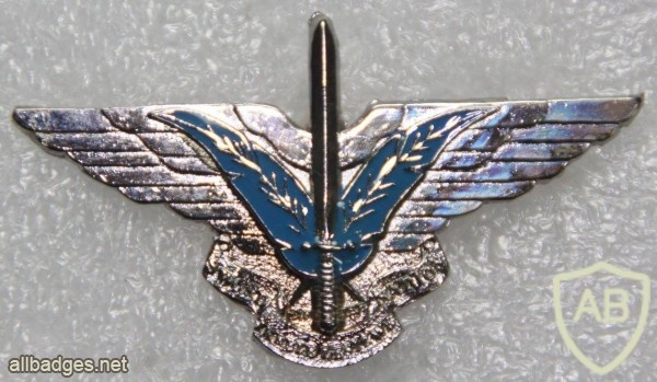 Ciskei Special Forces beret badge, Sword of the Nation img19242