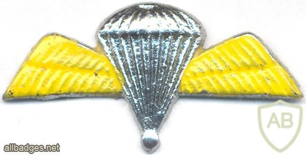 INDIA Army 50 Para Jumps Indicator Badge, obsolete img19431