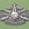 US Nave Fleet Marine Force Enlisted Warfare Specialist Insignia