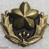 Japan Ground Self Defence Forces cap badge img20491