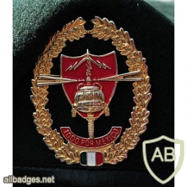 Mexican Special Forces Corps beret badge img20713