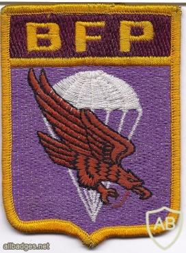 Mexico Parachute Rifle Brigade arm patch img20712