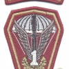 POLAND 1st Special Commando Regiment parachutist patch w/ Special Operations tab