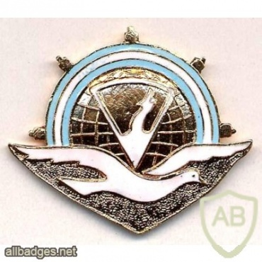 Argentine Navy Service in Antarctica badge img20844