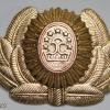 Tajikistan Army cap badge