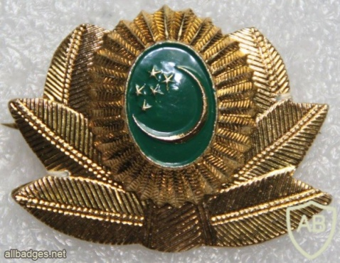 Turkmenistan Army cap badge img20875