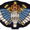 Oman´s Special Forces Parachute badge