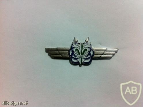 חיל המודיעין- 93 img21512