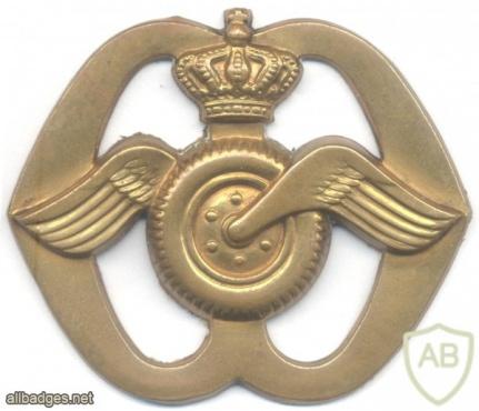 NETHERLANDS Royal Dutch Army Transport Corps beret badge img22102