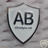 All Badges Site logo pin, silver img22396