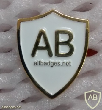 All Badges Site logo pin, gold img22397