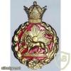 Imperial Iranian Police cap badge