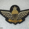 Singapore Senior Parachutist (1978-1990's)(Ceremonial dress, large size) img22978