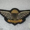 Singapore Basic Parachutist (1975-1990's)(Ceremonial dress, large size)