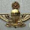 Singapore Master Parachutist (lndonesian made)