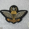 Singapore Master Parachutist (current)(Ceremonial dress, small size)
