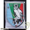 French Intelligence Brigade arm patch img23032