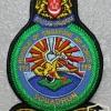 Singapore Air Force 119 Squadron
