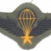 SOUTH VIETNAM Airborne Parachutist qualification wings, Basic, cloth