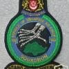 Singapore Air Force 140 Squadron (Osprey)