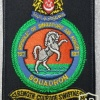 Singapore Air Force 127 Squadron