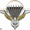 LAOS Airborne Parachute qualification wings, type 2