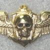 Brazil Marine Commando img24855