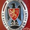 FRANCE 117th Infantry Regiment pocket badge