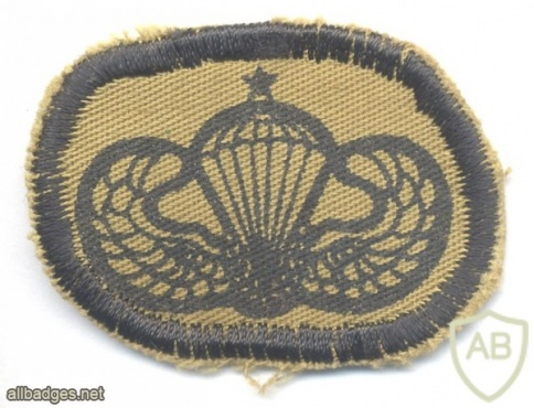 BRAZIL Air Force Airborne Rescue Squadron (Para-SAR) parachute wings, Senior Class, subdued img25745