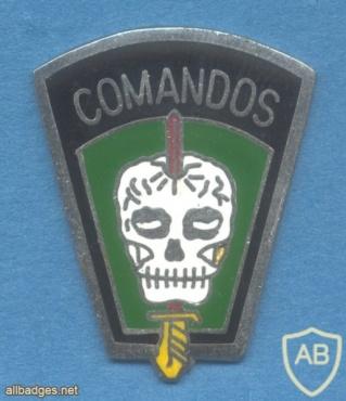 BRAZIL Army Commando qualification badge img25747