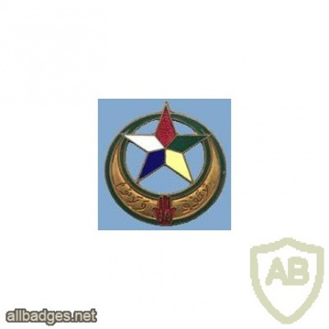 French Army 16th Tunisian Tirailleurs Regiment pocket badge, type 2 img25849