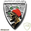 French Army 2nd Zouave Regiment pocket badge, type 1