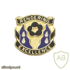 485th Chemical Battalion USAR